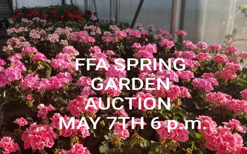 Spring FFA Auction